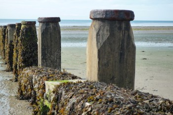 BeachGroynes