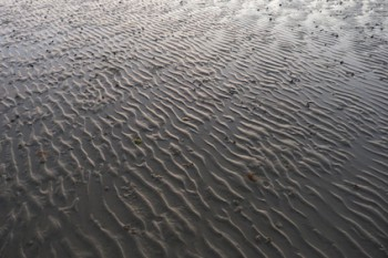 RipplesInSand